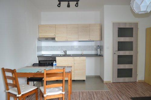 Pronájem velmi pěkného bytu 1+kk na klidném místě
